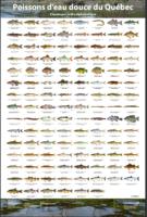 poisson-eau-douce-quebec